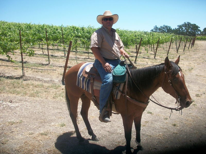 Gil trail riding through the vineyard